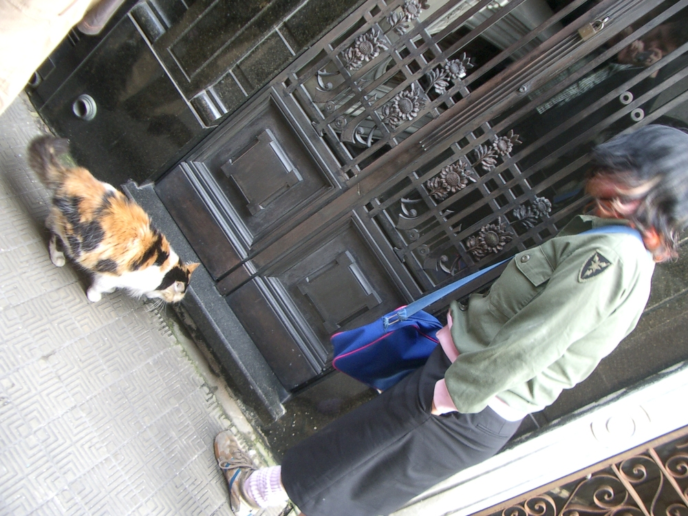 Buenos Aires 2005 - lani and cemetery cat