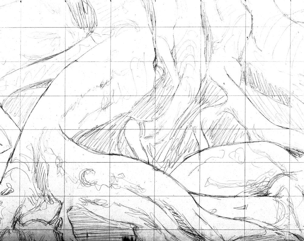 fleshtree sketch