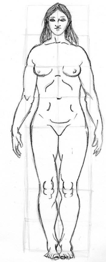 basic proportions, female
