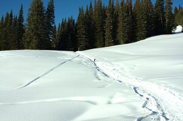 Montana January 2010
