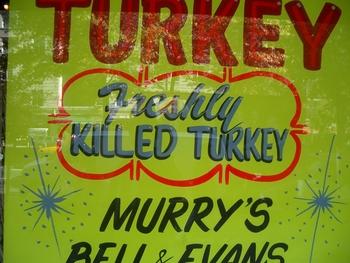 freshly killed turkey